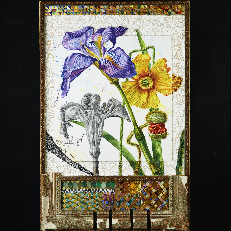 Iris and Poppy